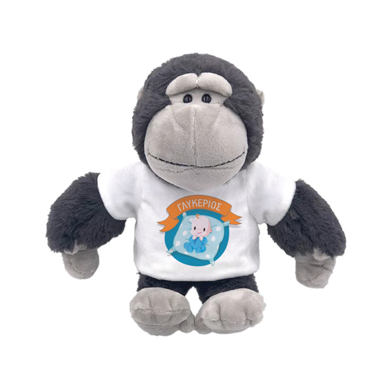Picture of Monkey with Baby Boy Plush Toy