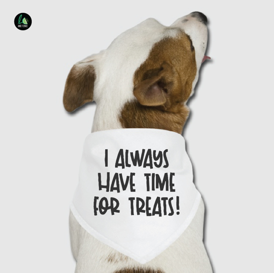 Picture of I Always Have Time for Treats Pet Bandana
