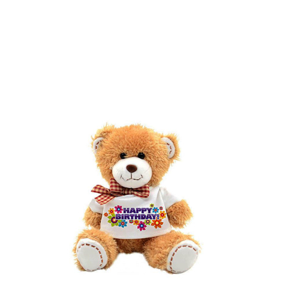 Picture of Small Teddy Bear with T-shirt