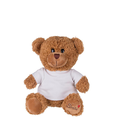 Picture of Medium Teddy Bear with T-shirt