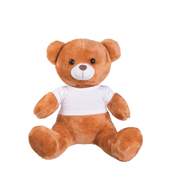 Picture of Large Teddy Bear with T-shirt